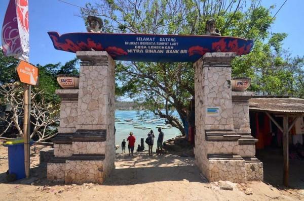 Pulau Lembongan9-next